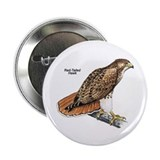 Red-Tailed Hawk Bird 2.25&quot; Button (10 pack)