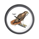 Red-Tailed Hawk Bird Wall Clock