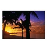 Beach Palm Sunset Postcards (Package of 8)
