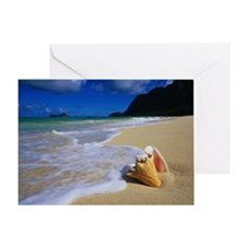 Seashell on the Shore Greeting Card