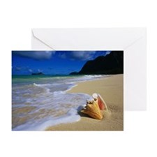 Seashell on the Shore Greeting Cards (Pk of 10)