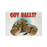 Python Snake - Got Balls Rectangle Magnet (100 pac