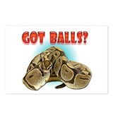 Python Snake - Got Balls Postcards (Package of 8)