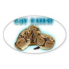 PYTHON SNAKE - GOT BALLS? II Oval Decal