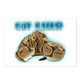 PYTHON SNAKE - GOT BALLS? II Postcards (Package of