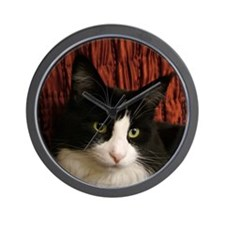 B&W Maine Coon Cat says Hello! Wall Clock