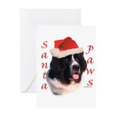 Santa Paws landseer Newf Greeting Card