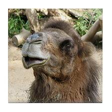 Helaine's Camel Tile Coaster