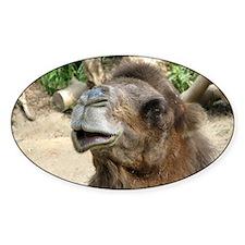 Helaine's Camel Oval Decal