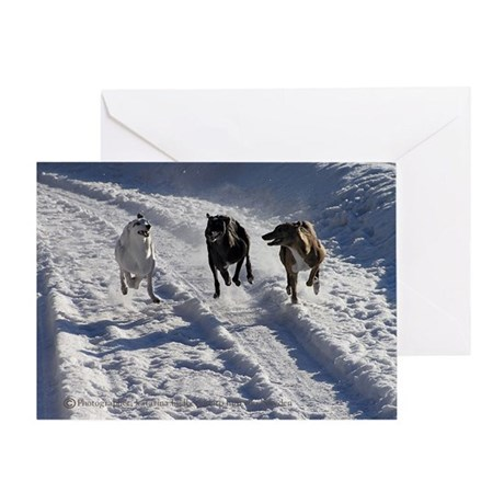 Snowy Greyhound Race Greeting Card