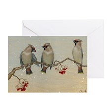 Cute Caia Greeting Cards (Pk of 10)