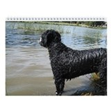 Portuguese Water Dog Wall Calendar