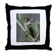 Throw Pillow Hummingbird