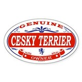 CESKY TERRIER Oval Decal