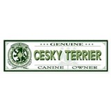 CESKY TERRIER Bumper Car Sticker