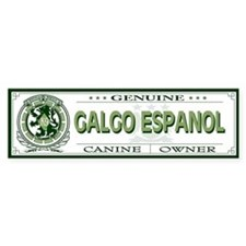 GALGO ESPANOL Bumper Car Sticker