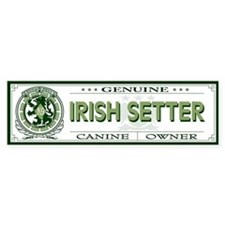 IRISH SETTER Bumper Bumper Sticker