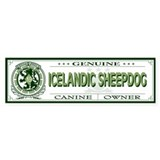 ICELANDIC SHEEPDOG Bumper Bumper Sticker