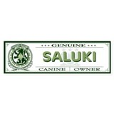 SALUKI Bumper Car Sticker
