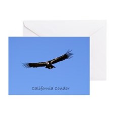 California Condor Greeting Cards (Pk of 10)