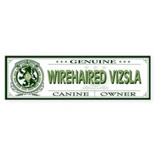 WIREHAIRED VIZSLA Bumper Car Sticker