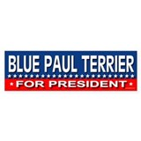 BLUE PAUL TERRIER Bumper Bumper Sticker