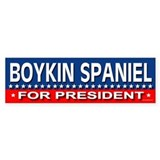 BOYKIN SPANIEL Bumper Bumper Sticker