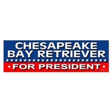 CHESAPEAKE BAY RETRIEVER Bumper Bumper Sticker