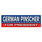 GERMAN PINSCHER Bumper Car Sticker