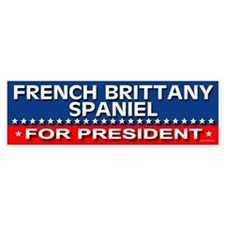 FRENCH BRITTANY SPANIEL Bumper Bumper Sticker