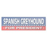 SPANISH GREYHOUND Bumper Bumper Sticker