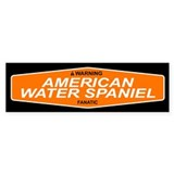AMERICAN WATER SPANIEL Bumper Car Sticker