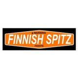 FINNISH SPITZ Bumper Bumper Sticker