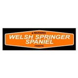 WELSH SPRINGER SPANIEL Bumper Car Sticker
