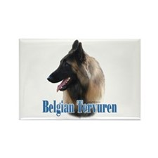 Tervuren Name Rectangle Magnet (100 pack)