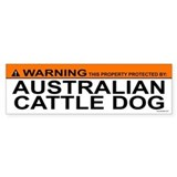 AUSTRALIAN CATTLE DOG Bumper Car Sticker