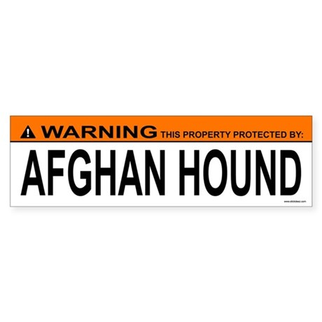 AFGHAN HOUND Bumper Sticker