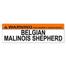 BELGIAN MALINOIS SHEPHERD Bumper Bumper Sticker