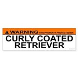 CURLY COATED RETRIEVER Bumper Bumper Stickers