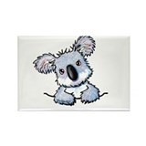 Pocket Koala Rectangle Magnet (100 pack)