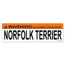 NORFOLK TERRIER Bumper Bumper Sticker