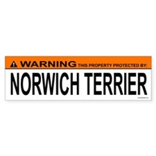 NORWICH TERRIER Bumper Car Sticker