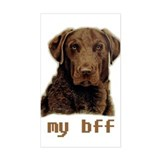 bff Chessie Rectangle Decal
