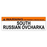 SOUTH RUSSIAN OVCHARKA Bumper Bumper Sticker