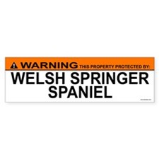 WELSH SPRINGER SPANIEL Bumper Bumper Sticker