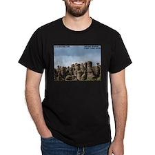 Chiricahua National Monument  T-Shirt