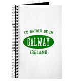 I'd Rather Be in Galway, Irel Journal