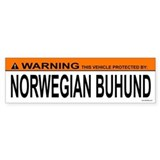 NORWEGIAN BUHUND Bumper Car Sticker