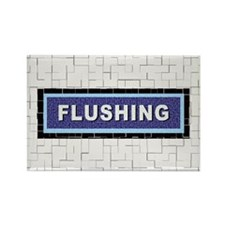 FLUSHING Magnet