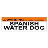SPANISH WATER DOG Bumper Car Sticker